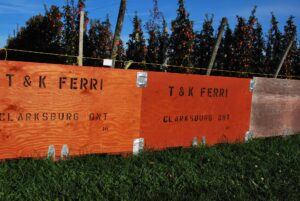 TK Ferri Orchards