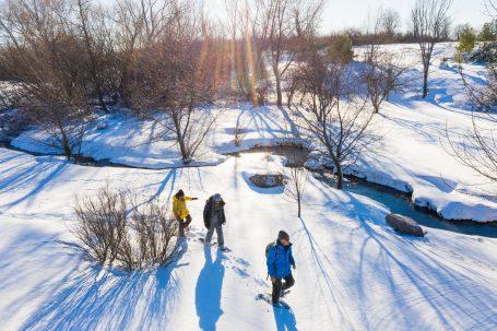 Free Spirit Tours – Snowshoeing