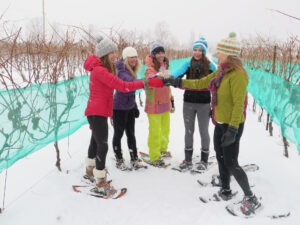 Snowshoe & Wine Tour at Georgian Hills Vineyard