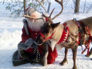 Santa Reindeer