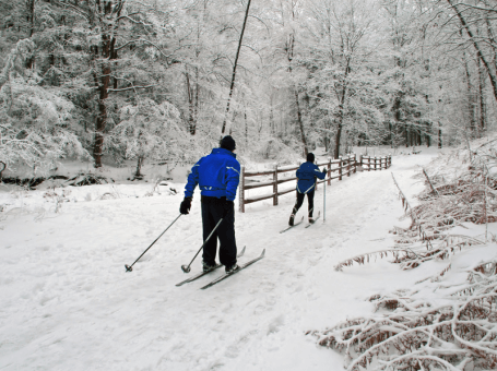 Cross-country skiing the Georgian Trail