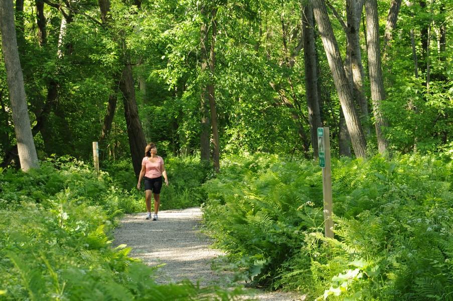 The Bruce Trail - Biking Day Trips in SGB.