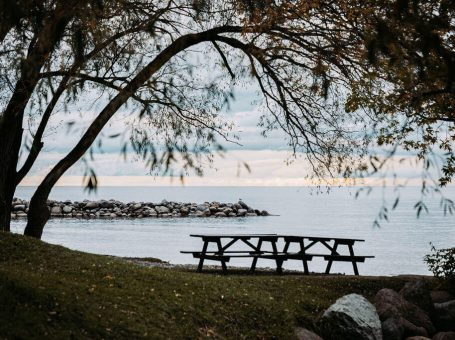 Collingwood waterfront picnic table