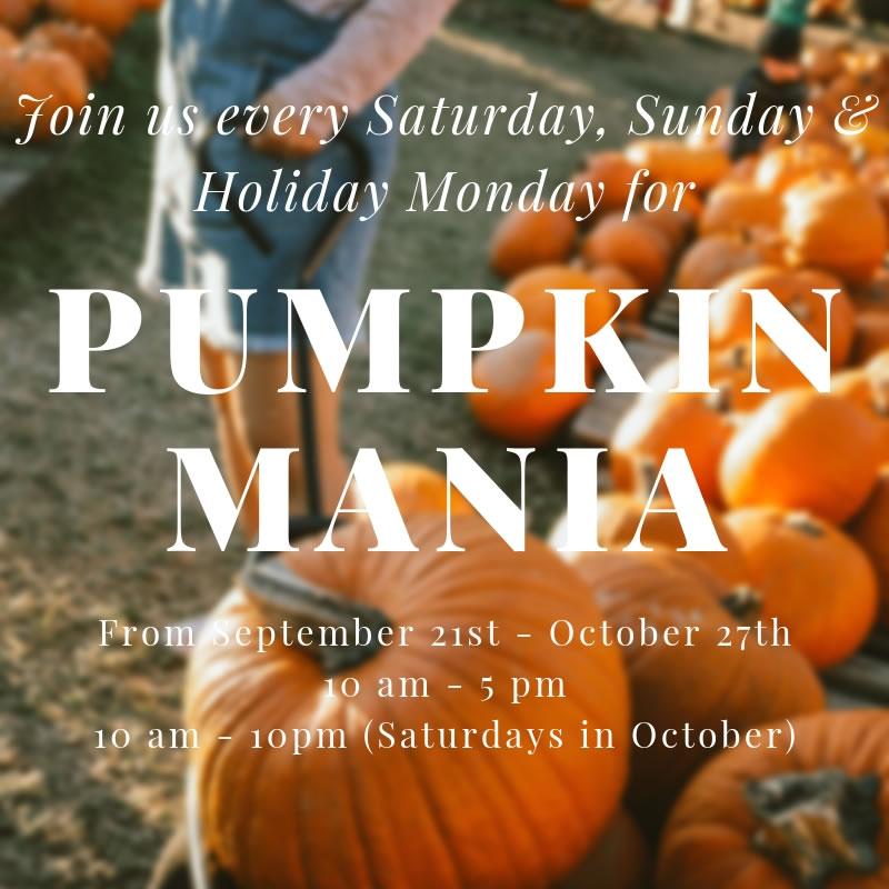 Pumpkin Mania Poster